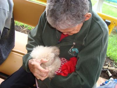 Terapias asistidas con perros.