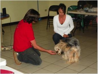 PRIMER CICLO FORMATIVO DE TERAPIA CON ANIMALES EN COSTA RICA Y CENTROAMERICA
